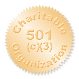 irs 501 c 3 group exemption cbamerica